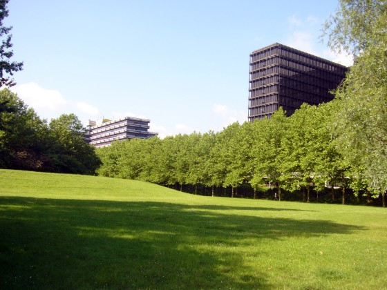 Modellierte Rasenflächen und dichte Platanenreihen: Die Zentrale Zone der City Nord(Foto: Schnitter, 2006)
